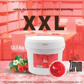 Neutralizador de olores Zerum Pro ambientador